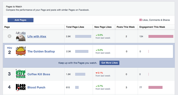 Fb pages to wach - insights