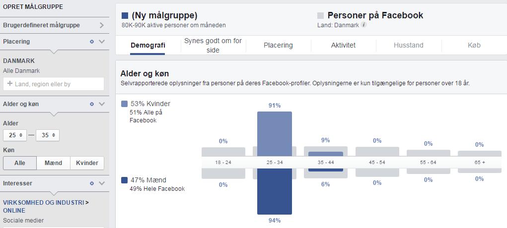 Facebook audience insights - demografi
