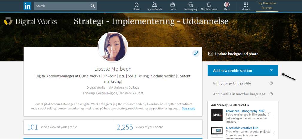 13. linkedin profil indhold
