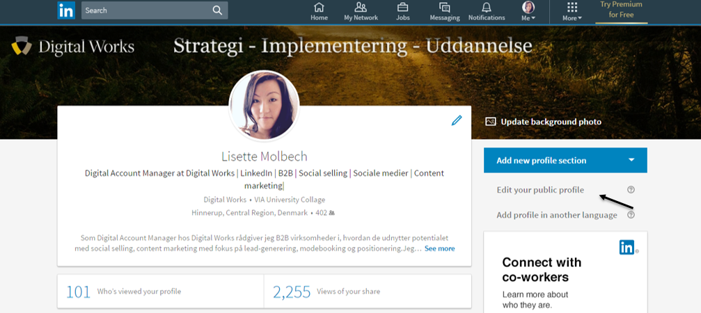 6. linkedin edit your public profile
